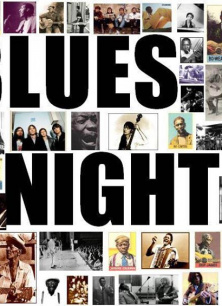 Culemborg Blues Night