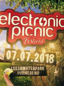 Electronic Picnic