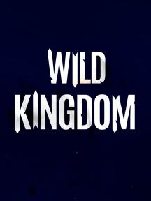 Wild Kingdom Winterfestival